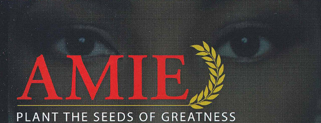 AMIE: Plant the Seeds of Greatness